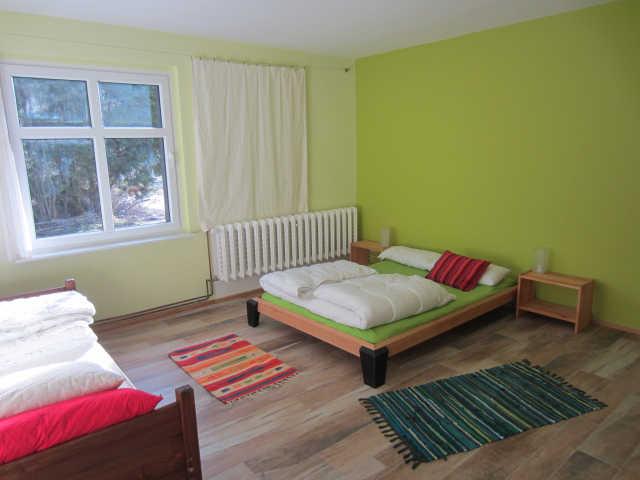 Zimmergrün(Ws2)